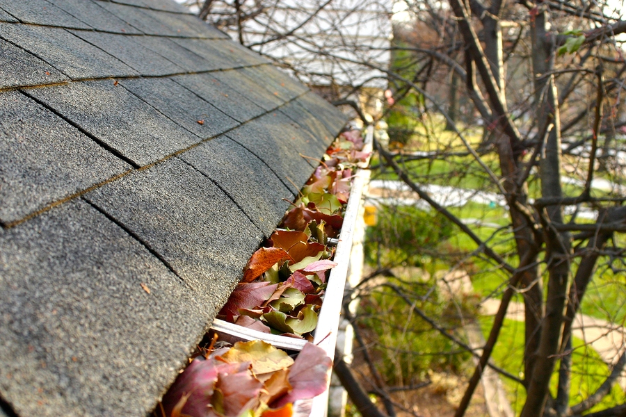 Gutter Cleaning In St Charles Il